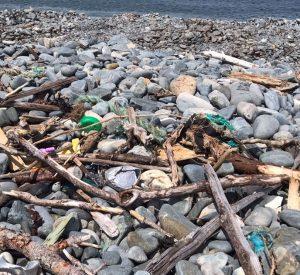 Coastline Litter Audit Report Released