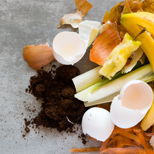 pile of compost including egg shells and leftover fruit and veggies
