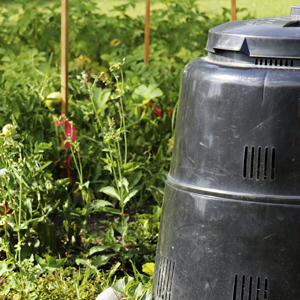 compost container outside next to plants